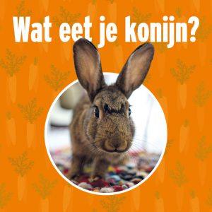 Wat eet je konijn | Animal Home